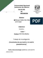 INVARIANTES.docx