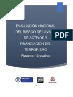 Resumen Ejecutivo Informe Final ENR 2016 - VFinal