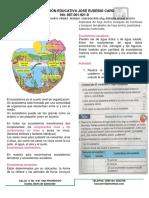 3 TALLER 3 CIENCIAS NATURALES  4 3 (1).pdf