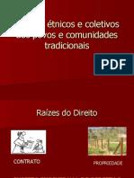 Direitos-étnicos-e-coletivos-dos-povos-e-comunidades-tradicionais
