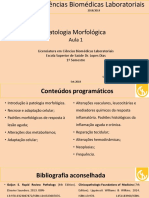 Aula 01 Pat Morf.pdf