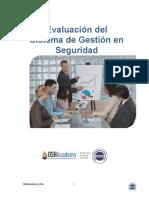 Manual 716 Evaluacion del Sistemas   de Seguridad.docx