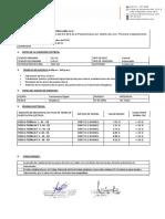 PROTOCOLO PUESTA A TIERRA.pdf