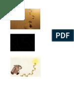natalia  logos de huellas