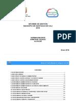 Informe de gestión del Municipio - 2016.pdf