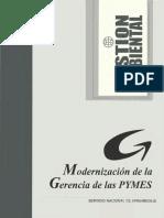 modernizacion_gerencia_PYMES_gestion_ambiental.pdf