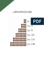 AUMENTO DA POPULAÇÃO CANINA.docx