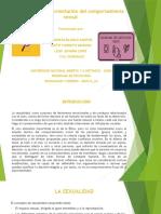 La bioética y la orientación del comportamiento sexual.pptx