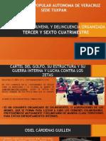 RESPONSABILIDAD JUVENIL Y DELINCUENCIA ORGANIZADA.pptx