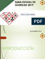 SES STPS ERGONOMIA  2019.pdf