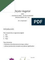 BI - 121 III 7 Tejido Vegetal 2018 3.pdf