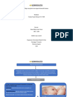 desarrollo humano mapa conceptual