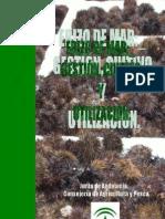 Erizo Mar Andalucia Web