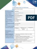 Plan de Trabajo Práctica Profesional - Serpetcol Miguel A Chinchilla