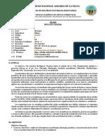 SILABOS-2014-1-SA101