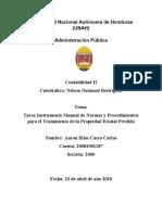 Instrumento Manual de Normas y Procedimientos para el Tratamiento de la Propiedad Estatal Perdida