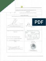 Manual organizacion CGEIB