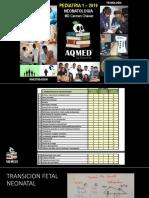12_Pre_Pediatria1-Neonato_EscuelitaAQMED2019.pdf