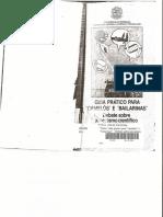 Guia_Prático_para_Camelôs_e_Bailarinas_Parte_I.pdf
