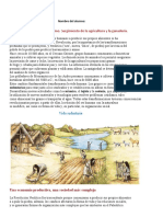 1º Año IPN Neolítico