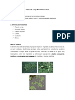guia macrofitas