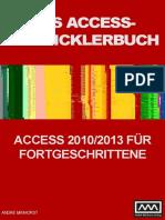 AEB2010_LP.pdf