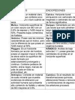 EPIPEDONES y ENDOPEDONES.docx