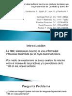 Factores de riesgo de tuberculosis bovina en rodeos lecheros en las provincias de Córdoba y Santa Fe.pdf