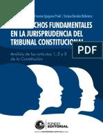 Los derechos fundamentales en la jurisprudencia del TC (1).pdf