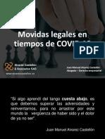 consejeria en movidas legales en tiempos de crisis.pdf
