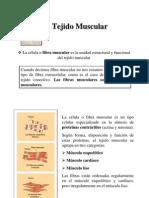 Clase_13_TejidoMuscular