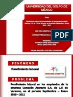 Rendimiento_laboral Maya y Pao