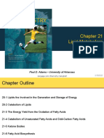 Chapter 21 Lipid Metabolism