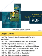 Chapter 19 Citric Acide Cycle