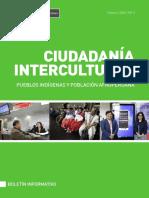 Boletin_Ciudadania_Intercultural_-_Febrero_2020