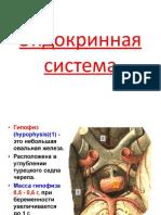 Эндокринная система.pptx