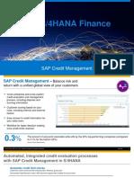 390439598-Credit-Management-Detailed.pdf