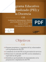 Programa Educativo Individualizado (PEI)