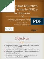 Programa Educativo Individualizado (PEI)