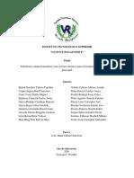 PISFINAL1.pdf