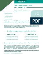 PDF+FUERTAFIT+-++CARGAS+CASA+Nivel+5.pdf