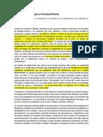 Síntesis de BSFT en Español