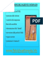riabustio.pdf