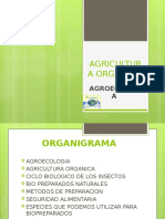 AGRICULTURA ORGANICA.pptx