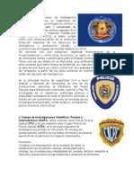 El Servicio Bolivariano de Inteligencia Nacional