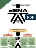 Mapa Conceptual_Caracteristicas de las emociones y los sentmientos_