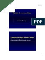 ANATOMIE MYO MEMBRE INF.pdf