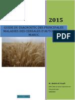 Brochure des principales maladies de céréales   version3