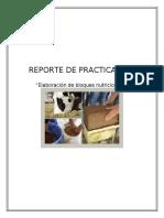 REPORTE DE PRACTICA (BN)