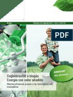 biogas_b.32_s_1.3